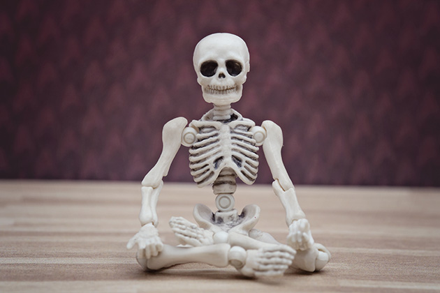 Photograph of a small model skeleton, cross-legged in a meditation position