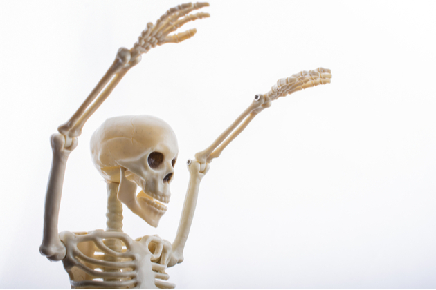Photograph of a model skeleton stretching