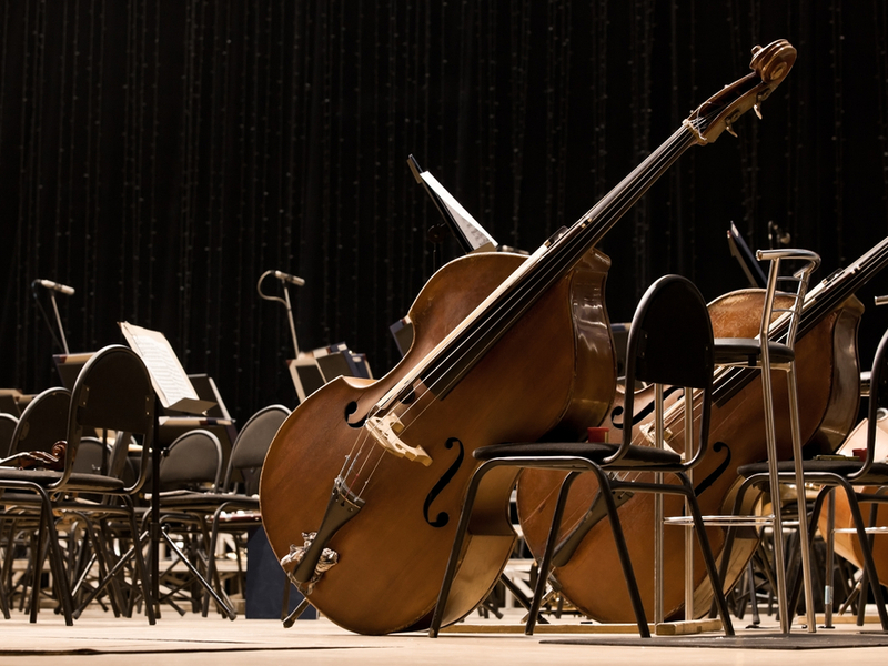 Two double bases are left leaning against chairs in what appears to be an orchestra setting.